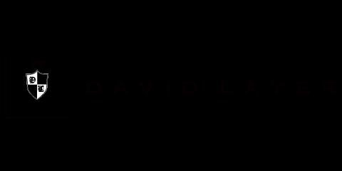 DAVID LAYER
